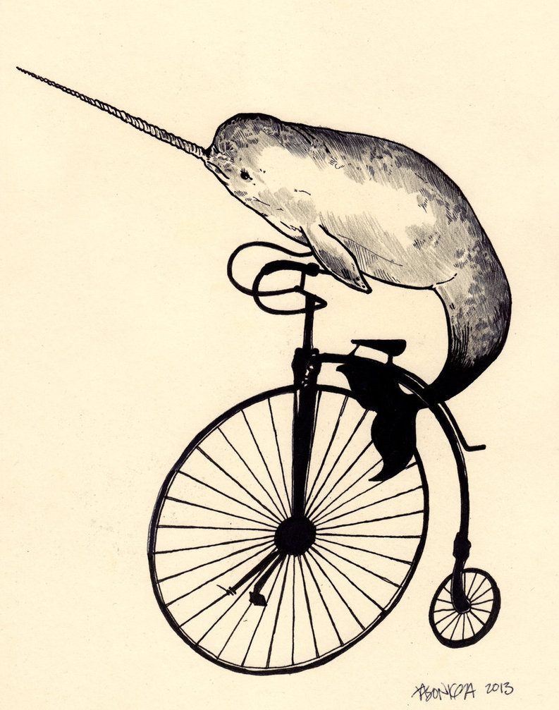 narwhal line drawing at getdrawings com free for personal use