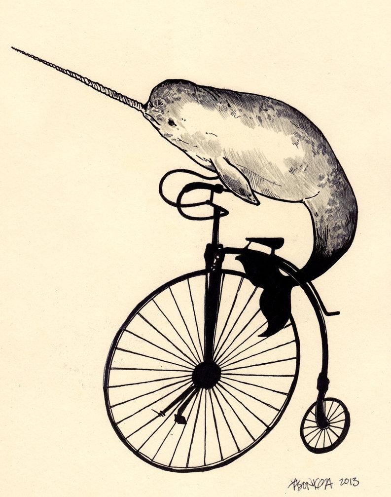 793x1007 Narwhal Bike By Jasonkoza