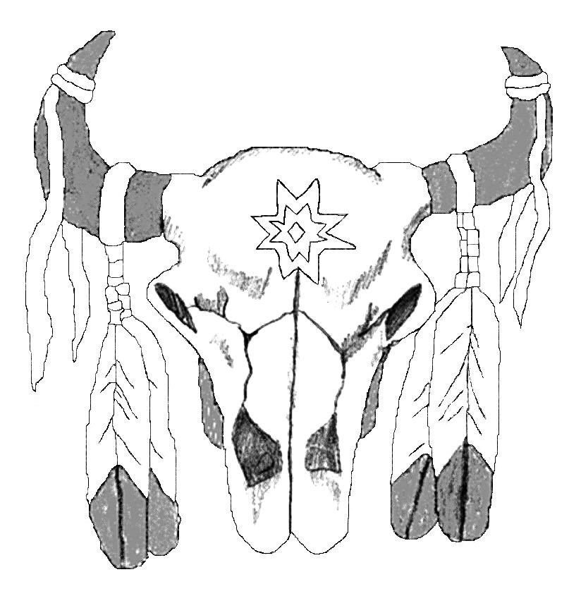 807x862 Native American Buffalo Drawing
