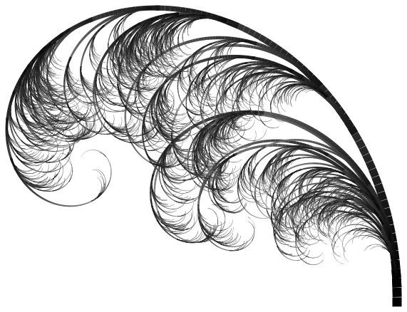 571x438 Ostrich Feathers Clipart