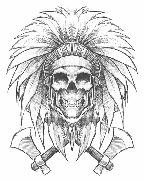 Native American Skull Drawing