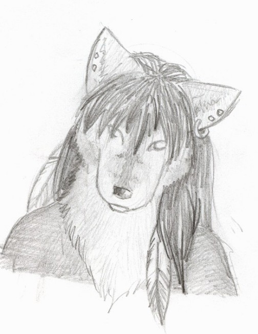 504x650 Native American Wolf Drawing Keywords And Pictures
