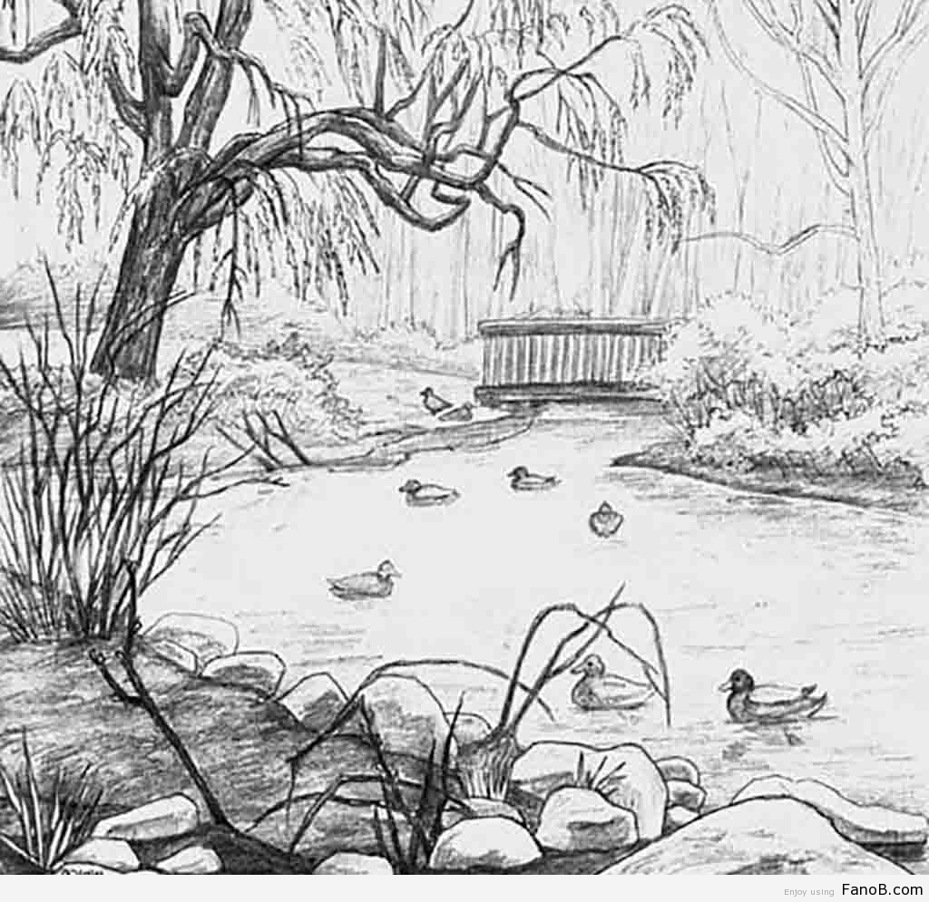 1024x995 Simple Drawing Ideas Of Nature Gallery Natural Drawing For Nature