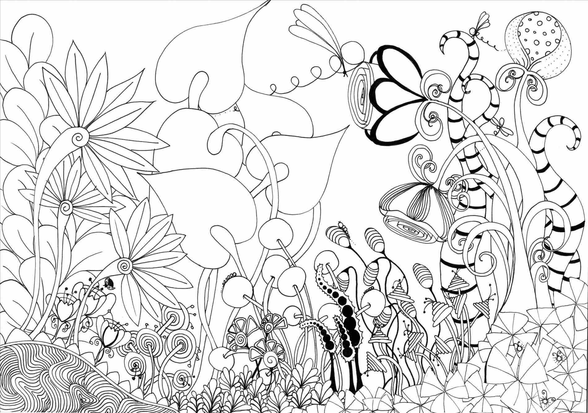 1900x1335 Pencil Flower Garden Drawing Of Sketch Original X Print Unframed