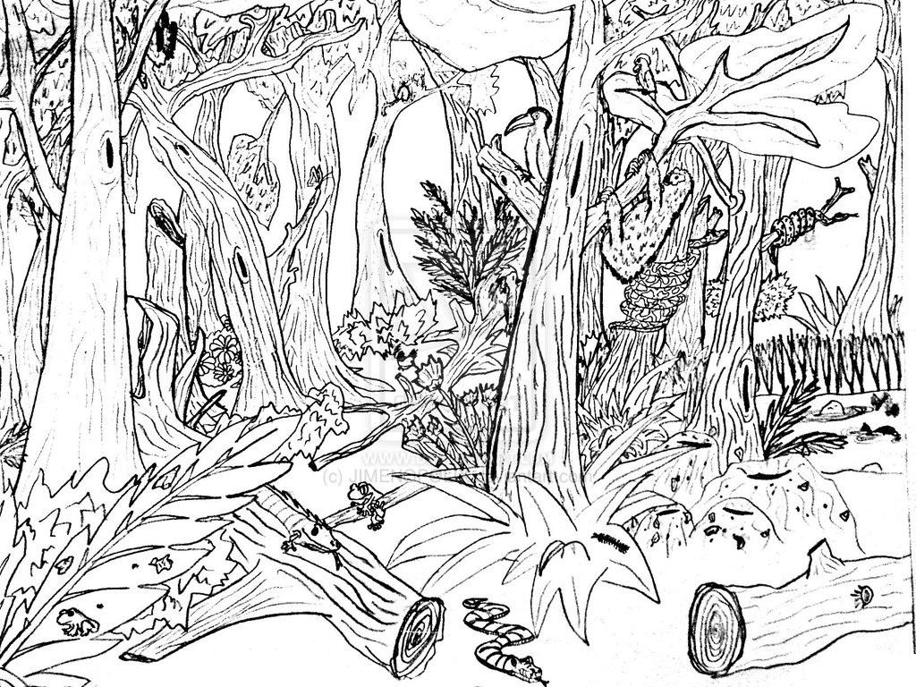 1024x768 Drawn Nature Coloring Sheet