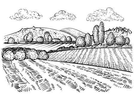 449x315 Rural Landscape Handdrawn Inked Sketch Style Illustration Hand