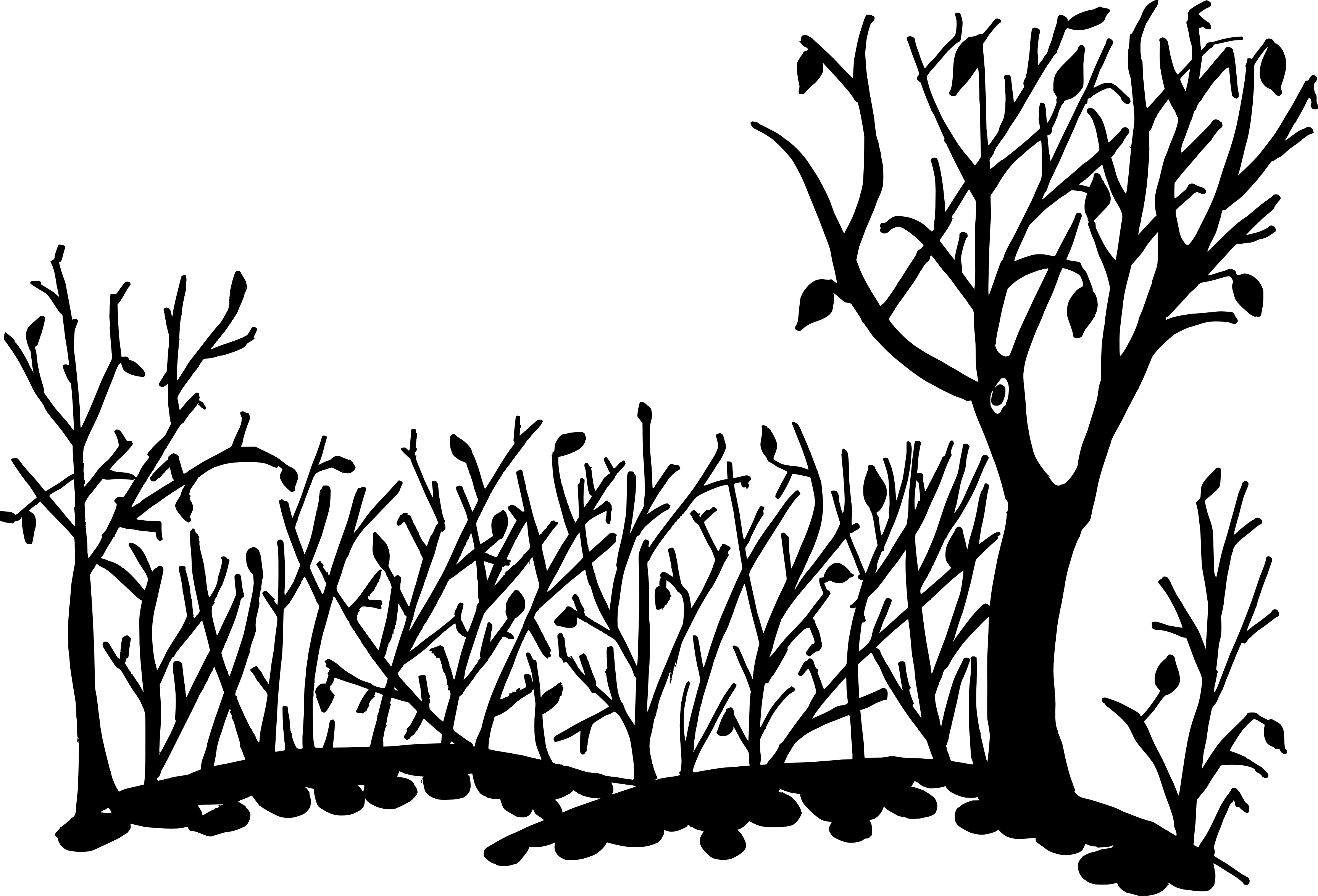 Nature Background Drawing