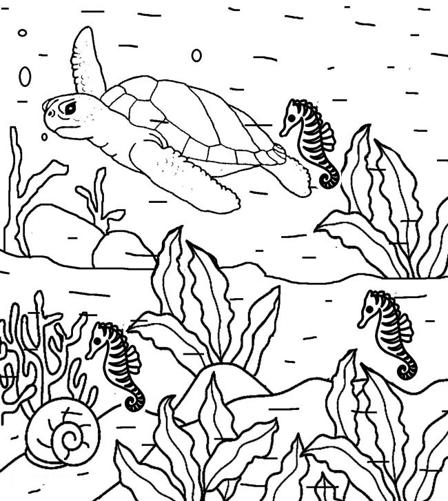 650x726 Printable Nature Coloring Pages Me