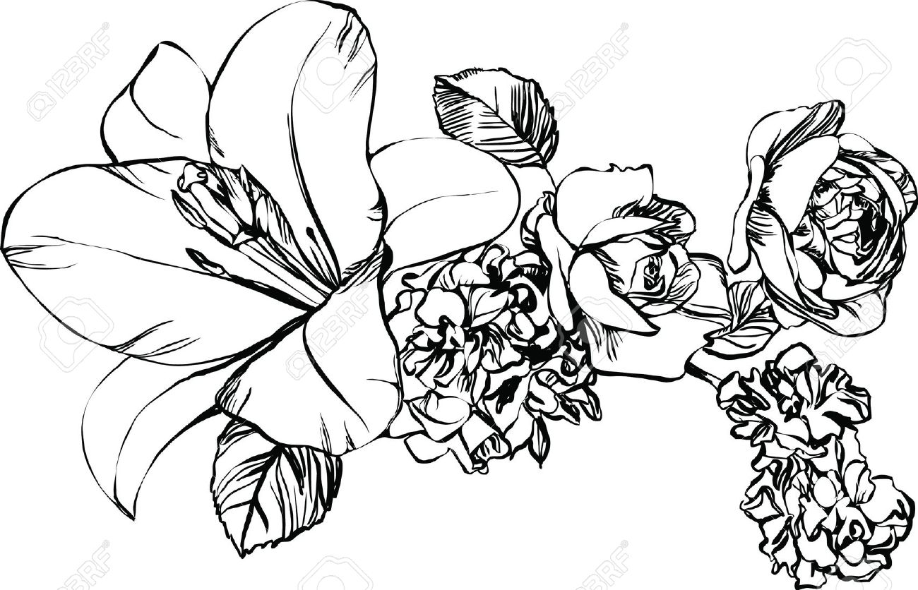 1300x836 Black And White Drawings Of Nature Clipart