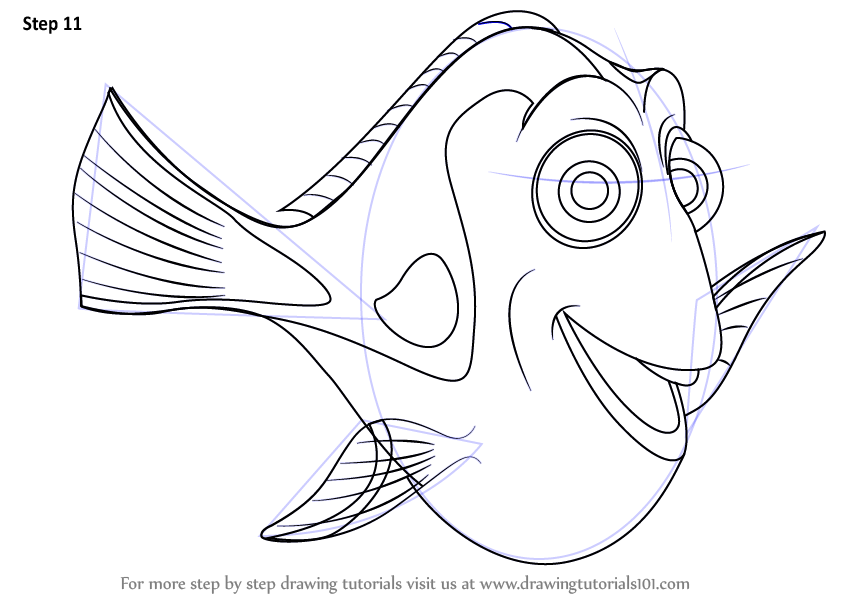 844x598 Learn How To Draw Dory From Finding Nemo (Finding Nemo) Step By