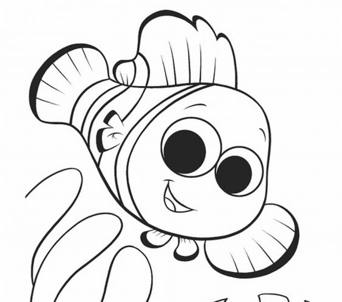 678x600 Nemo Coloring Pages To Print Kids Coloring