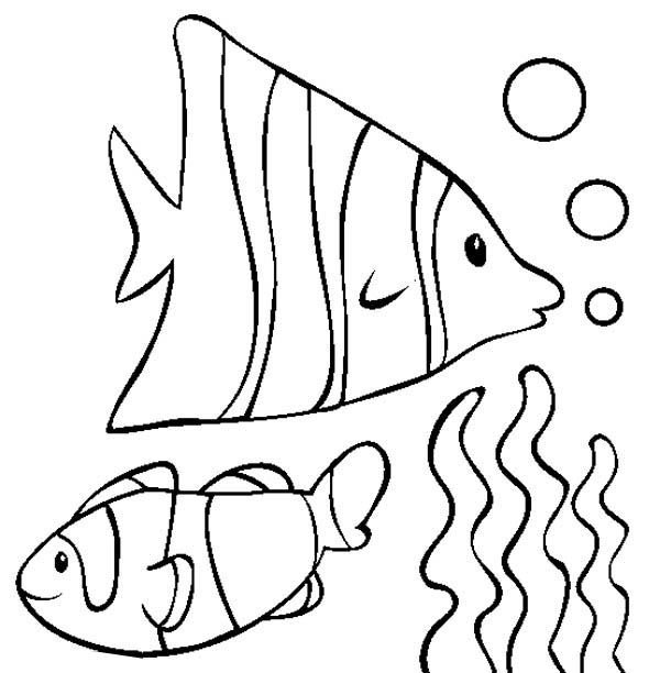 600x612 Nemo Fish Coloring Pages