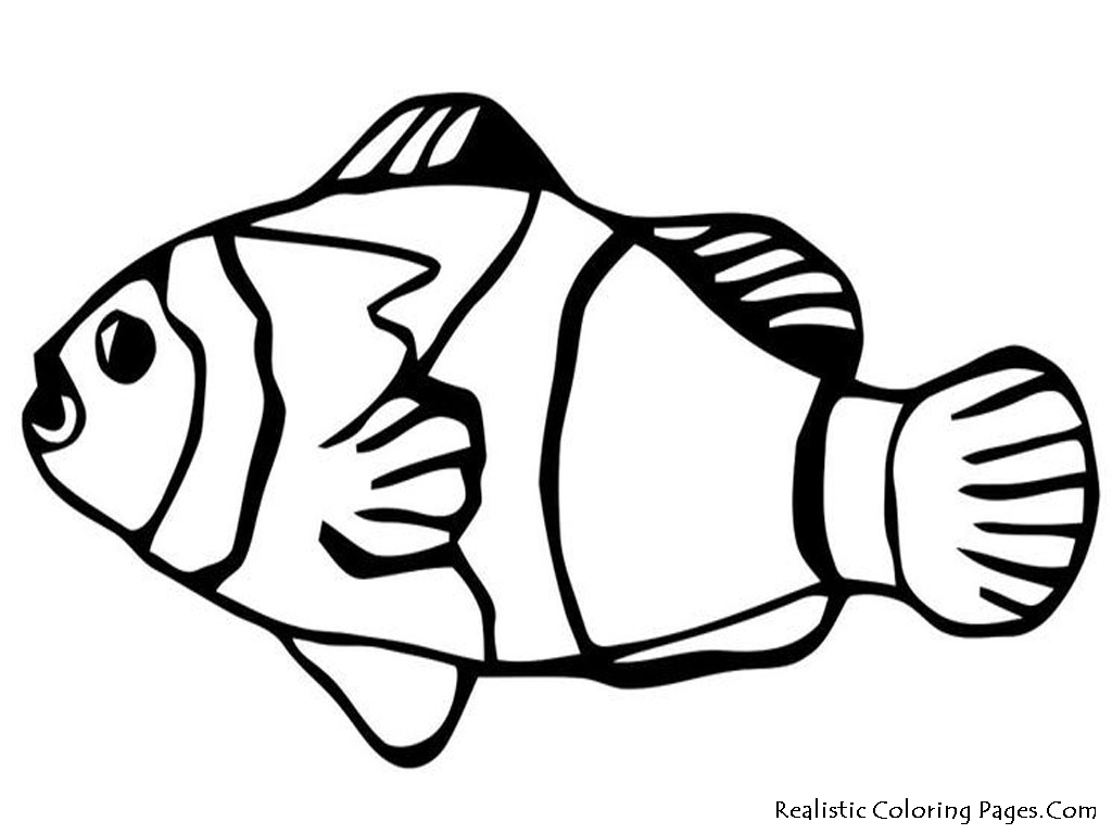 1024x768 Nemo Fish Coloring Pages