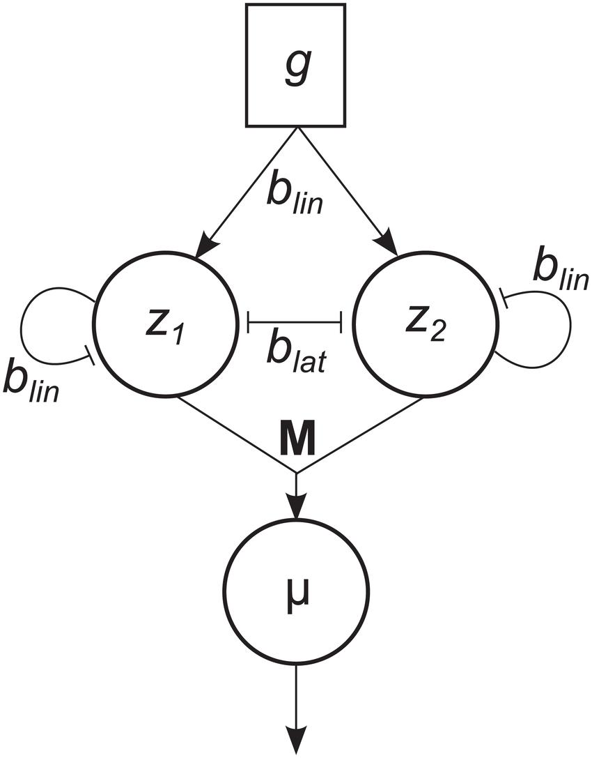 850x1087 Network Diagram For Two Alternative Hopfield Network (Cf. Eqs 9