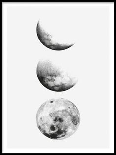 236x314 Full Moon Screen Printed Poster Glows In By Theramblinworkershop