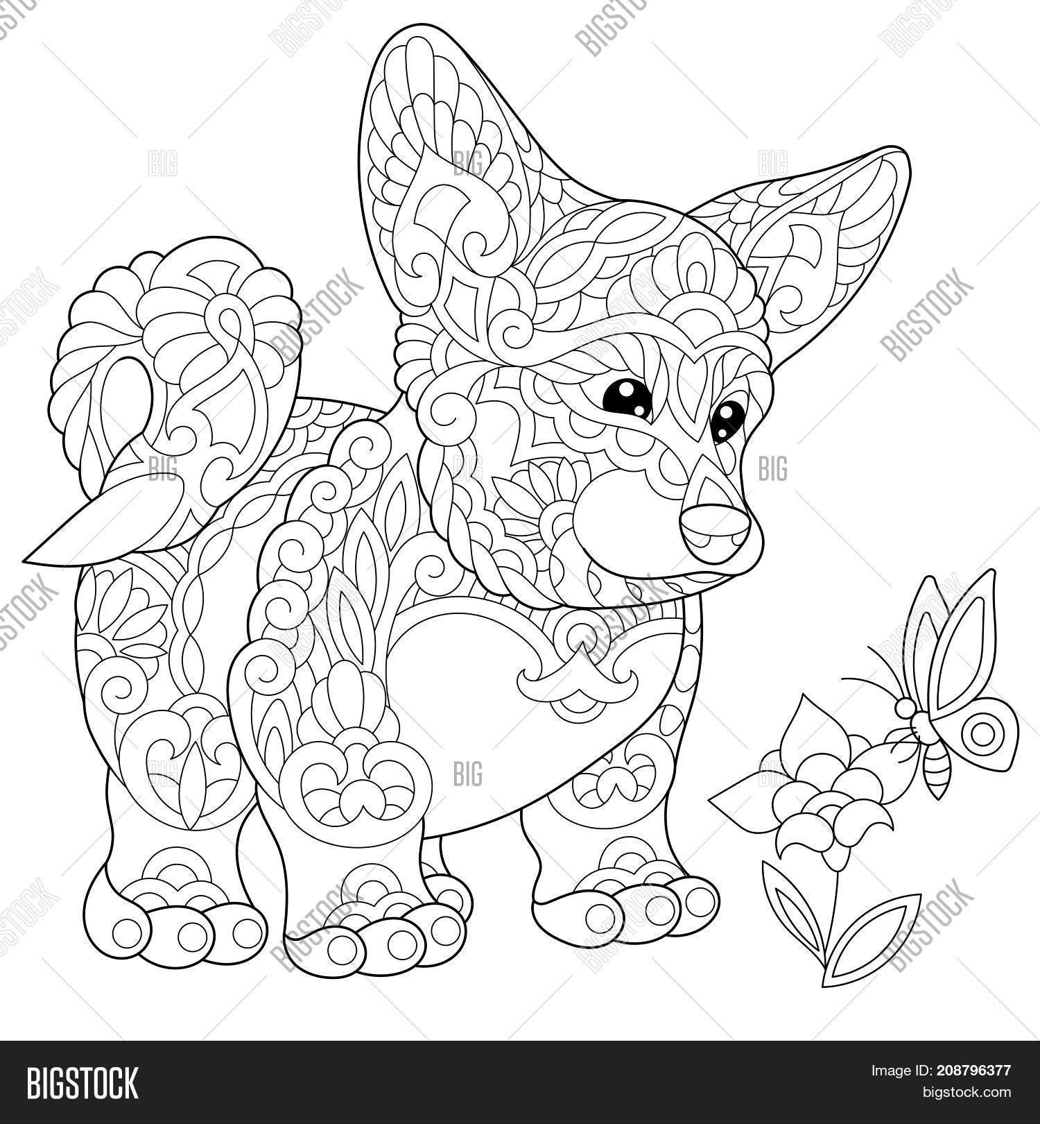 1500x1620 Coloring Page Welsh Corgi, Dog Image Amp Photo Bigstock