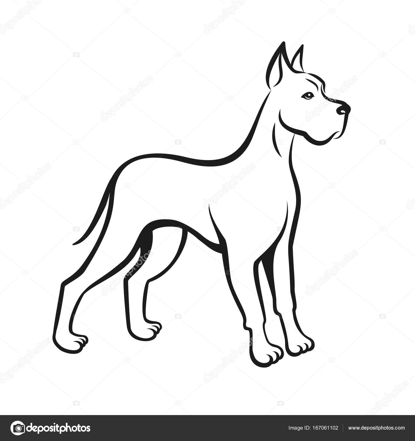 1600x1700 Dog Line Drawing Great Dane. Can Be Used As Pet Shop Logo