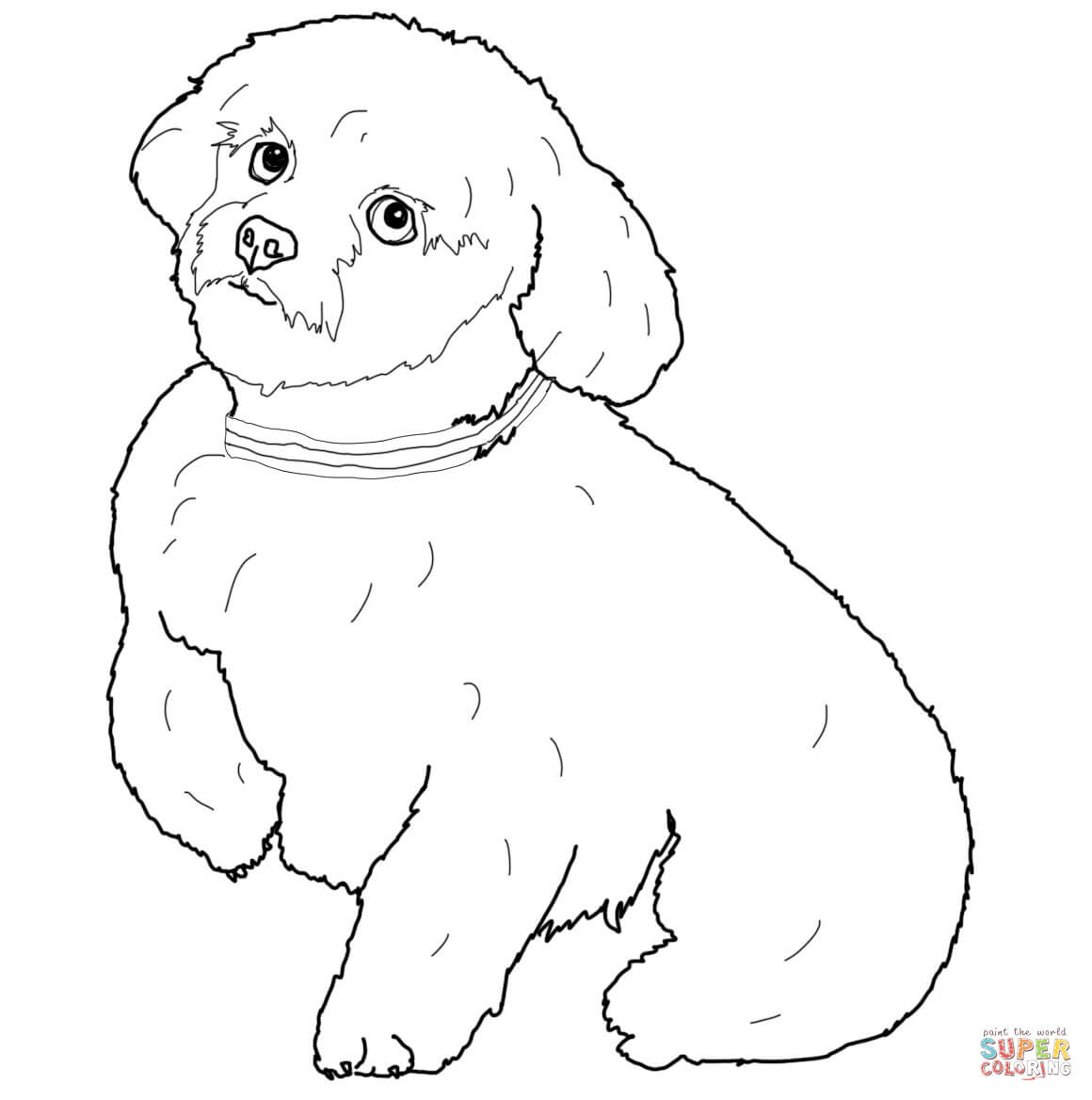 Newfoundland Dog Drawing At Getdrawings Com Free For Personal Use