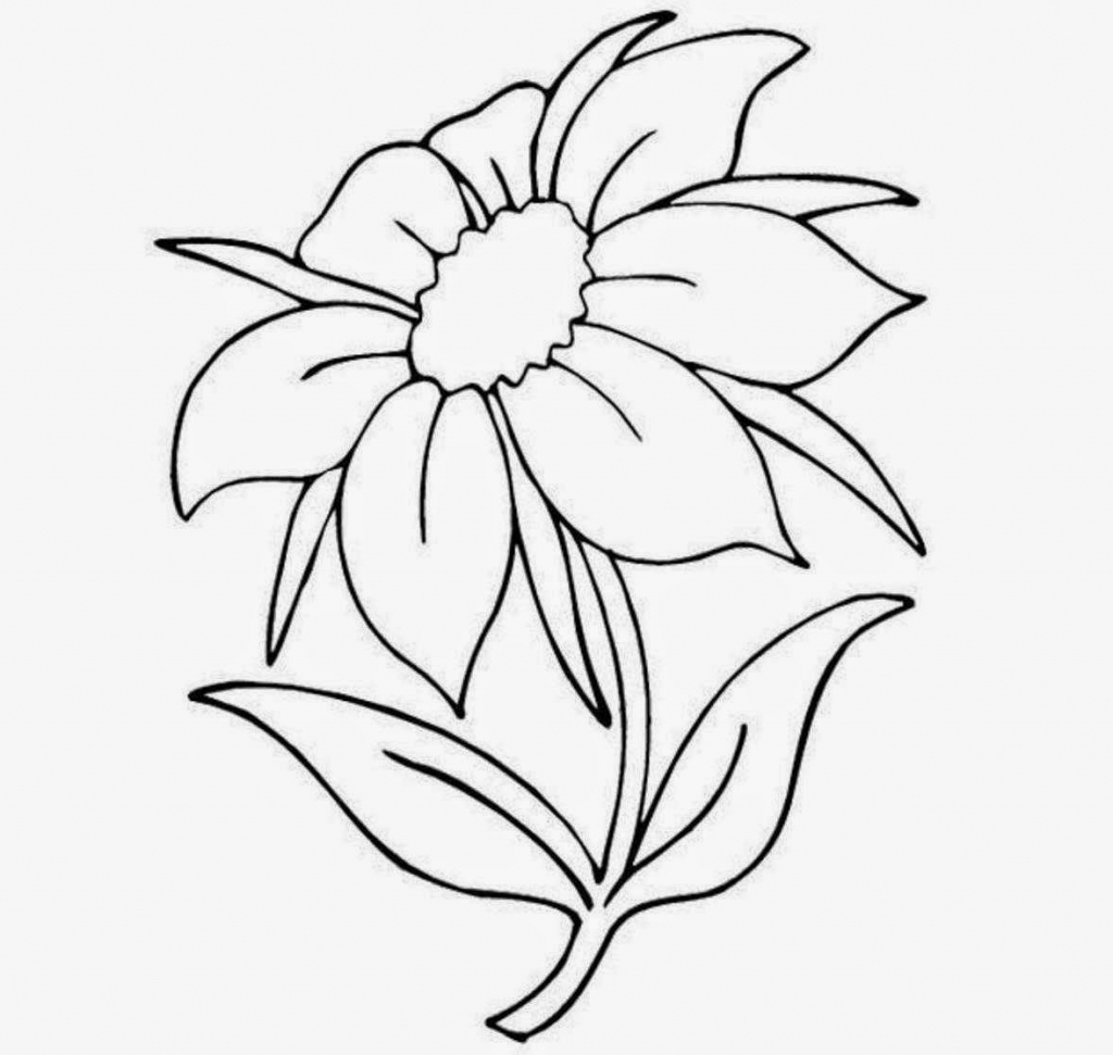 1024x971 Nice Flowers In Drawing Easy Flower Drawings Pictures Of Flowers