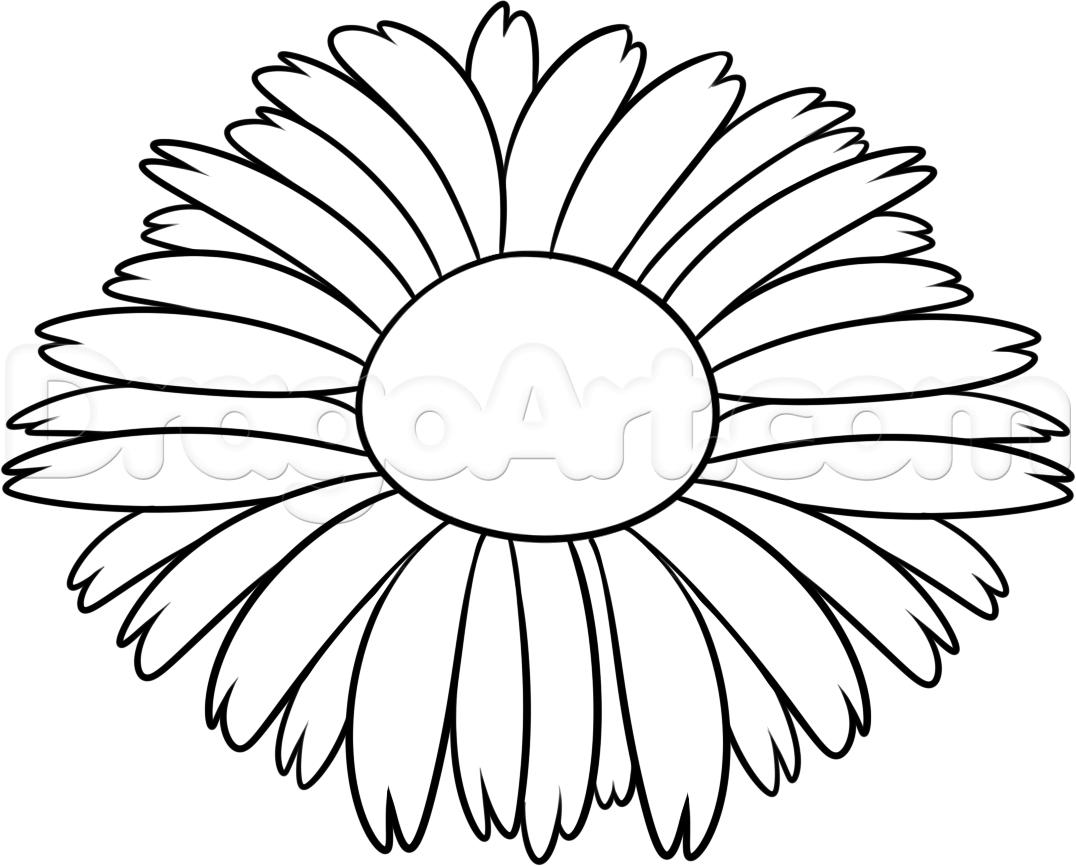 1076x866 Nice Flowers To Draw
