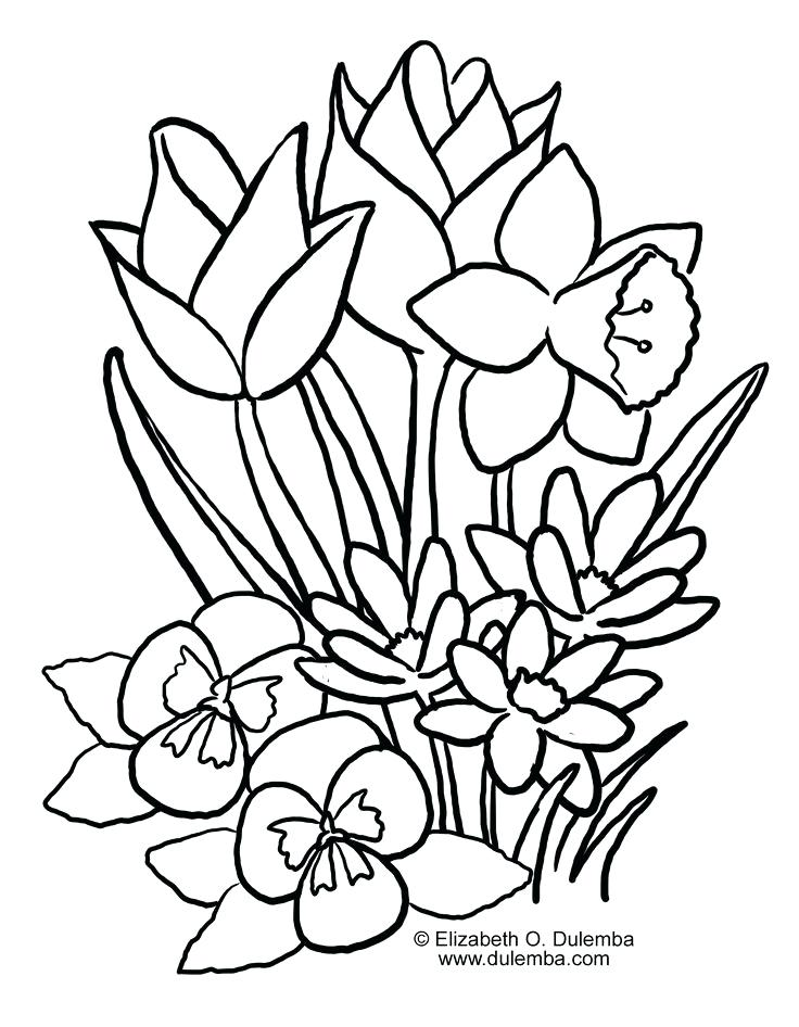 736x946 Cute Flower Coloring Pages Spring Coloring Pages Nice Coloring