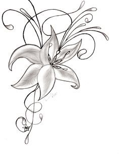 236x305 Beautiful Flower Pictures To Draw Allofpicts