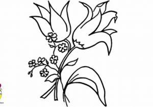 300x210 Nice Flower Drawings