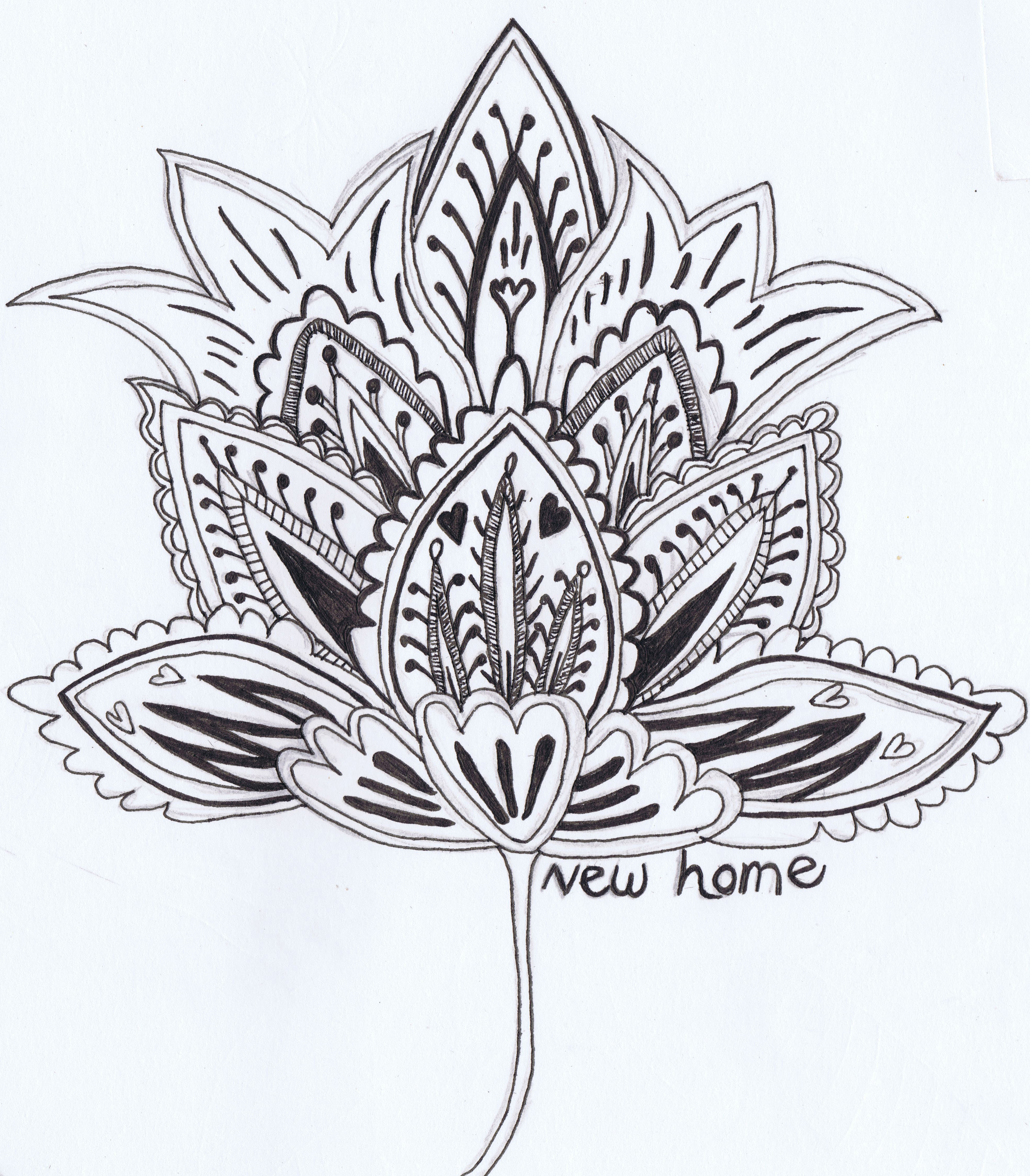 3934x4496 Beautiful Sketch Of Flower Nice Flowers To Draw. Beautiful Rose