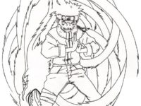 Nine Tailed Fox Drawing at GetDrawingscom Free for personal use