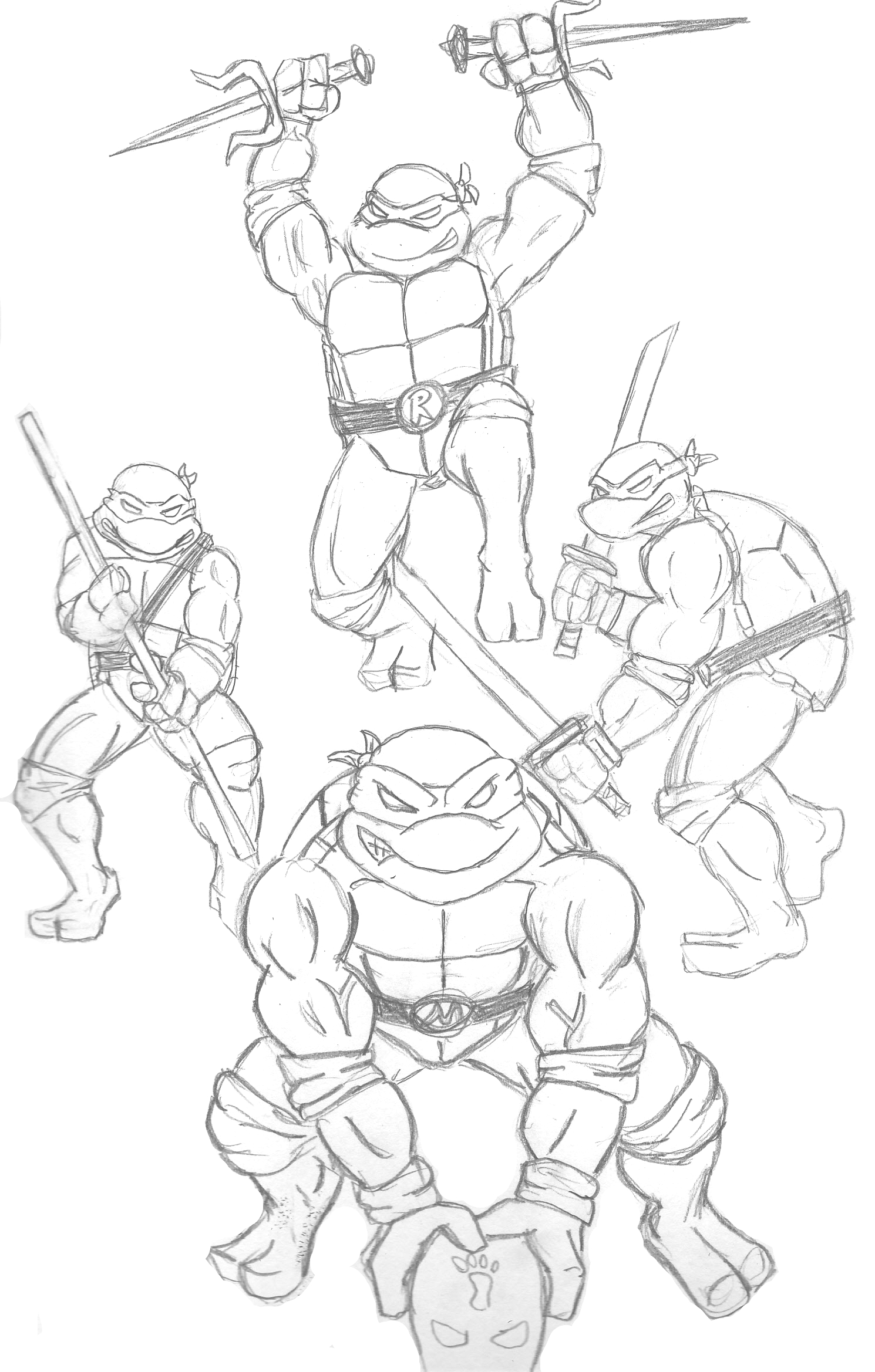 ninja turtles drawing at getdrawings com free for personal use
