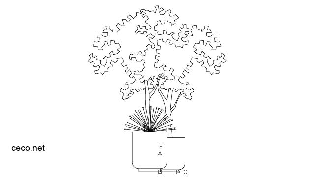 640x360 Ornamental Shrub In A Pot Block In Landscaping Plants Bushes
