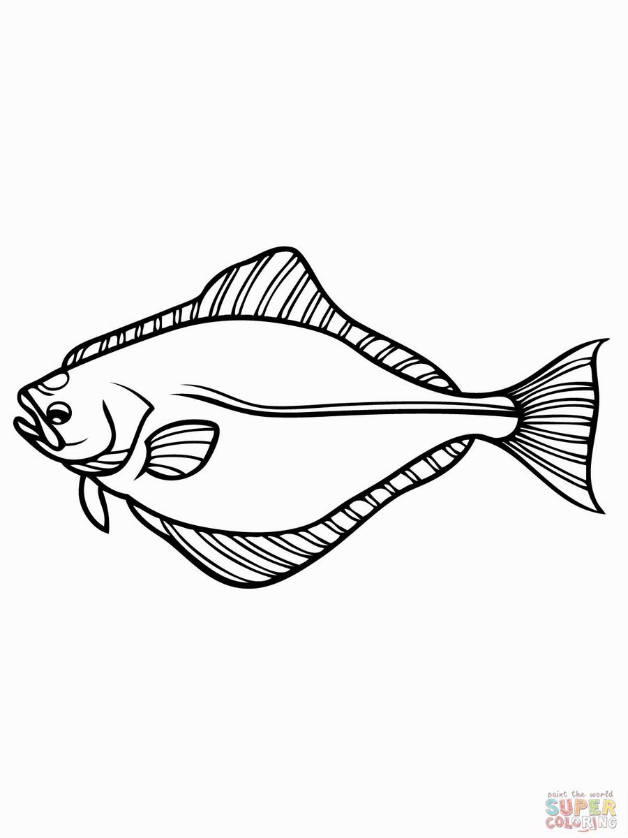 900x1200 Gar Fish Coloring Pics Gar Fish Teeth