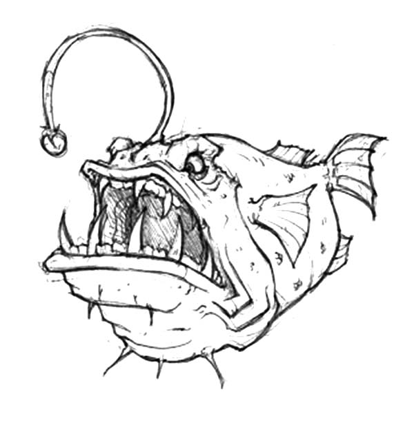 600x617 Angry Angler Fish Coloring Pages Angry Angler Fish Coloring Pages