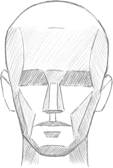 371x549 Learning The Planes Of The Face