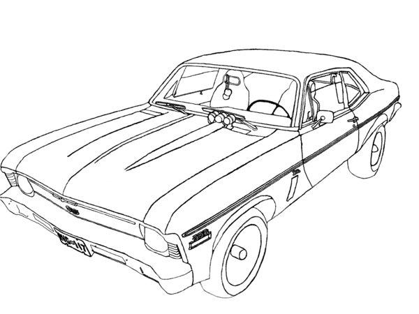 Nova Outline Drawing
