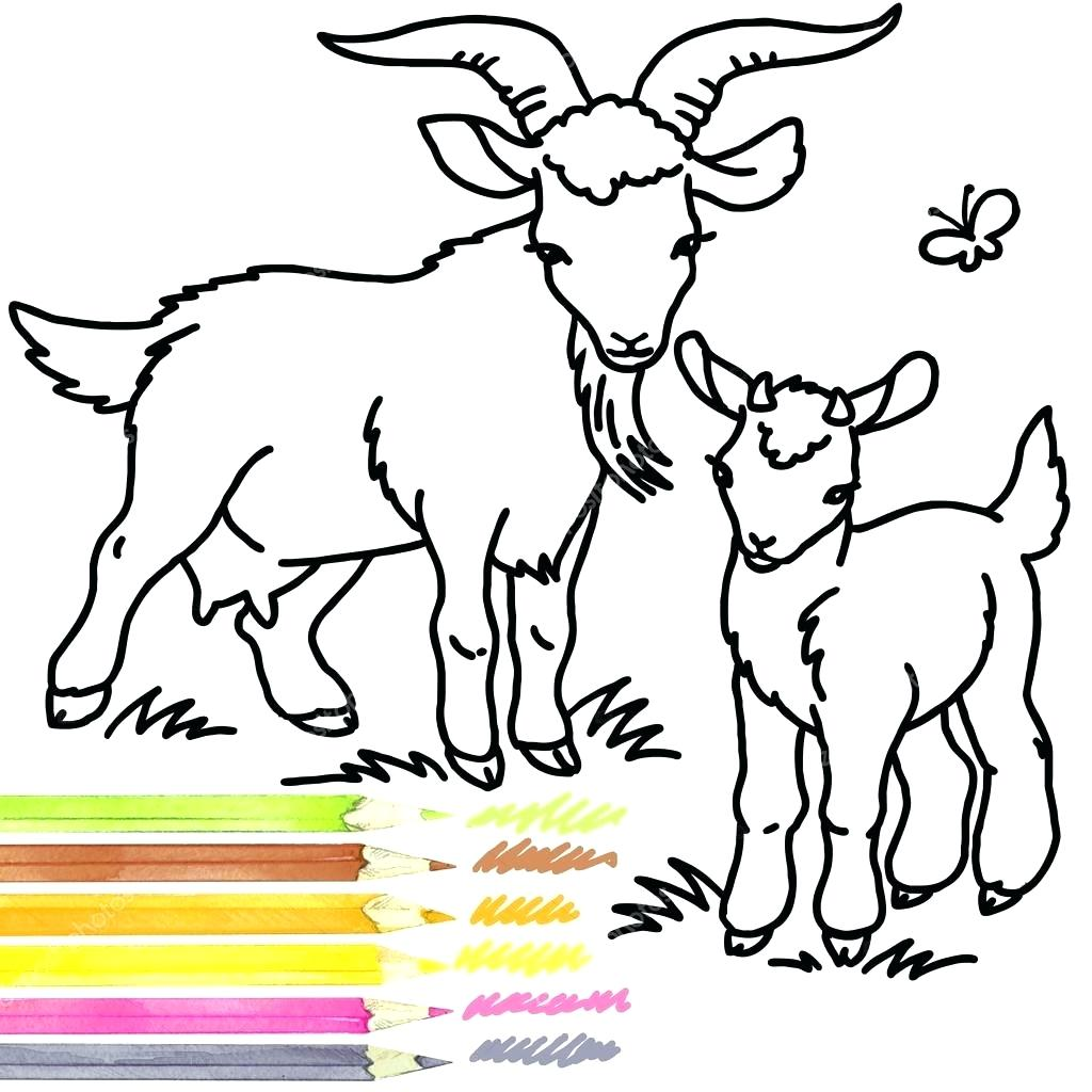 1024x1024 Coloring Goat Coloring Pictures Book Outline Drawing Cartoon Farm