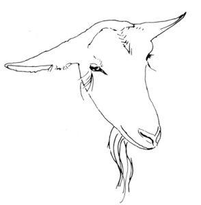 294x300 Big Picture Farm Goat Milk Candy Stratton Magazine