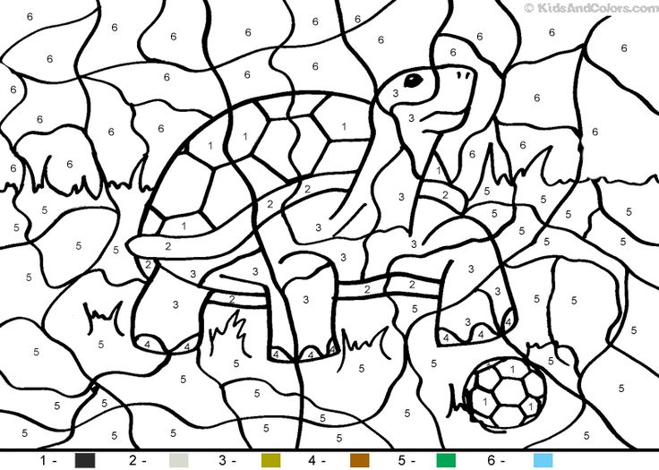 Number Animals Drawing At Getdrawings Com Free For Personal Use