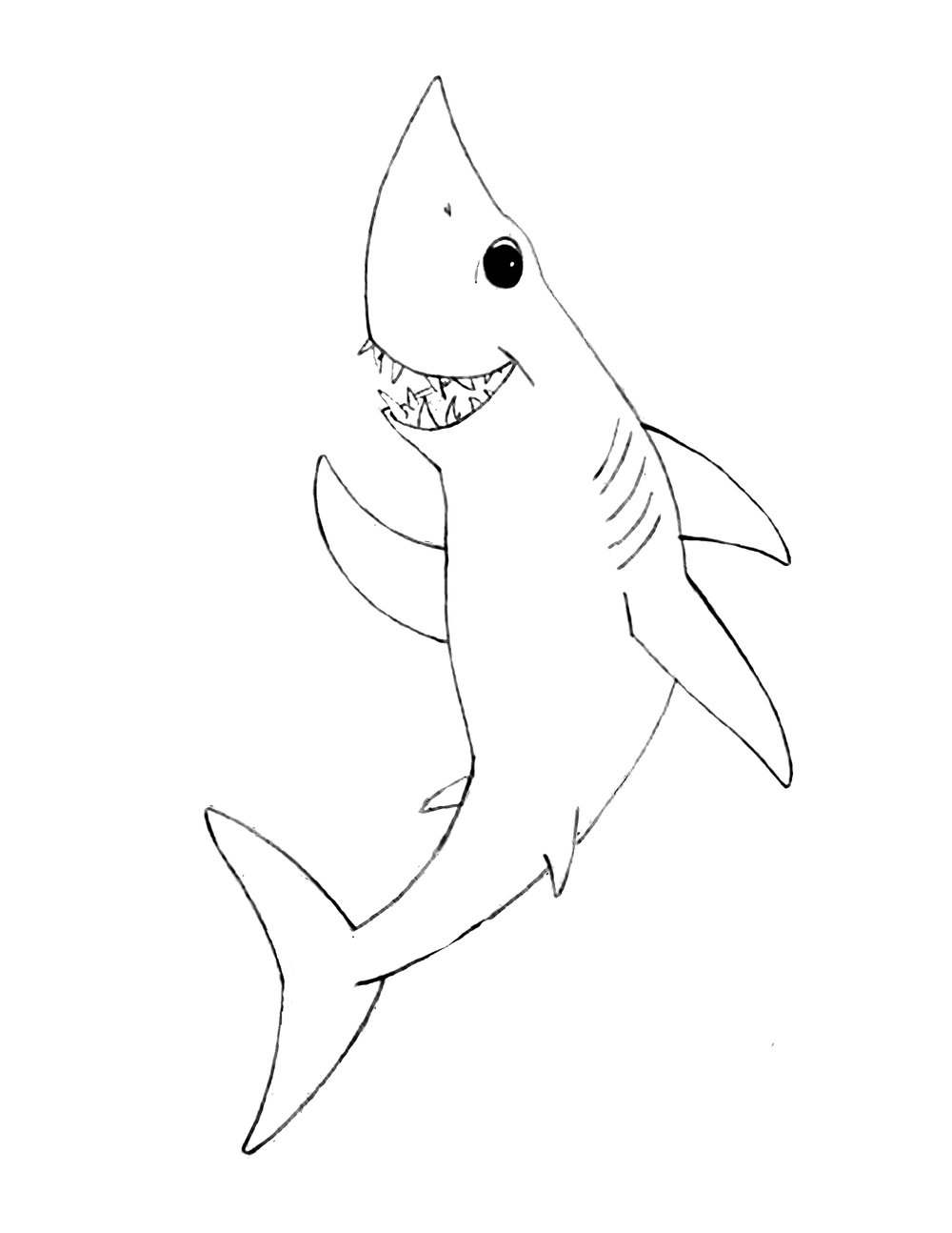 1000x1294 Instructions Amp Cut Outs Shark Stanley
