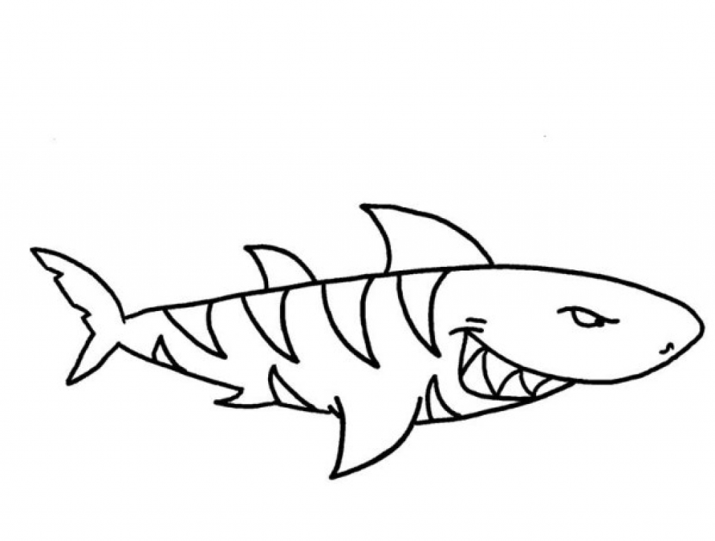 1024x774 Tiger Shark Coloring Pages Realistic Hammerhead Shark Coloring
