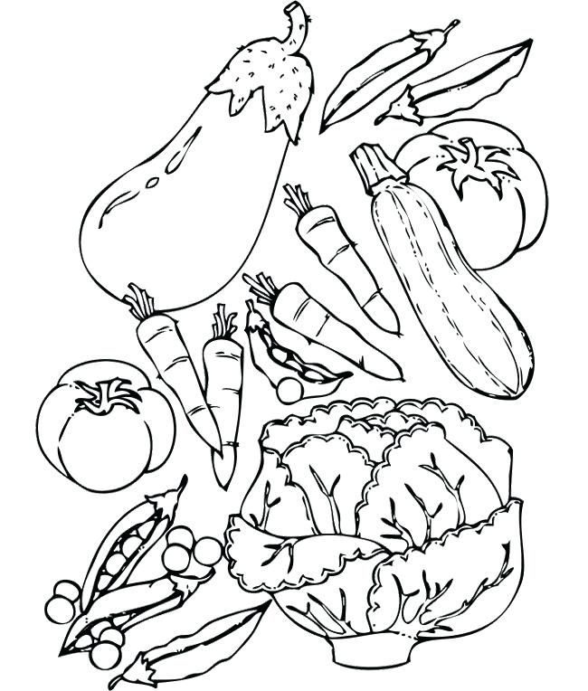 Nutrition Drawing At Getdrawings Com Free For Personal Use