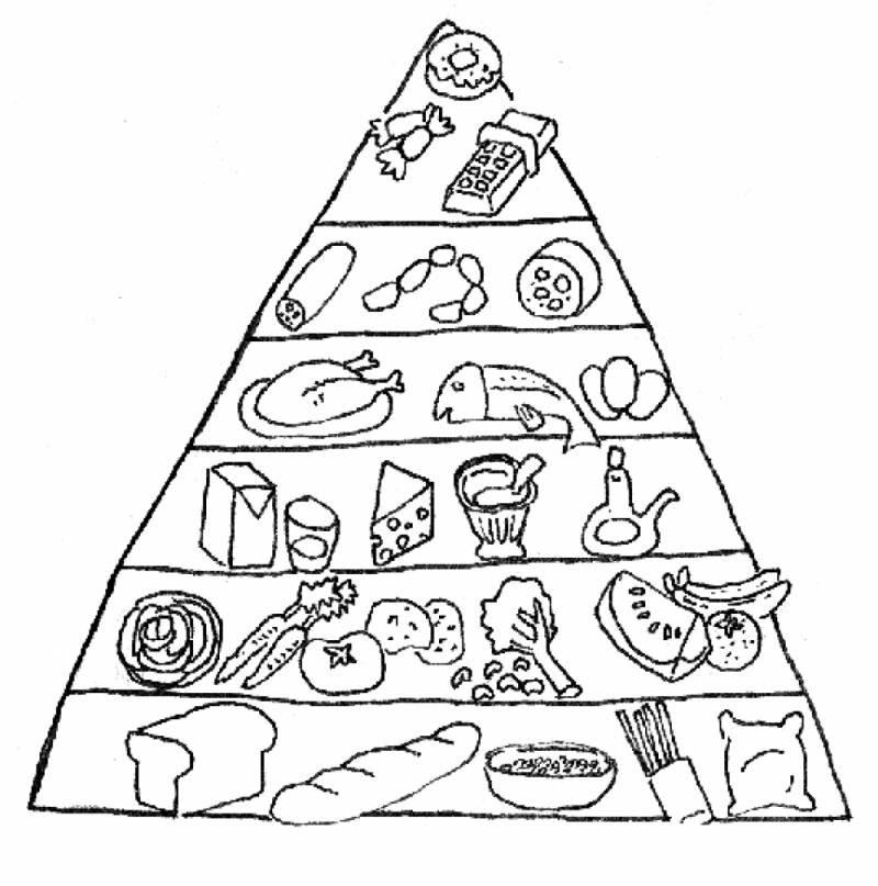800x807 food pyramid coloring pages for kids nutrition