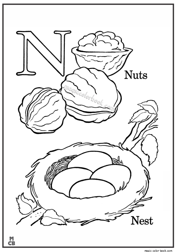 Nuts Drawing