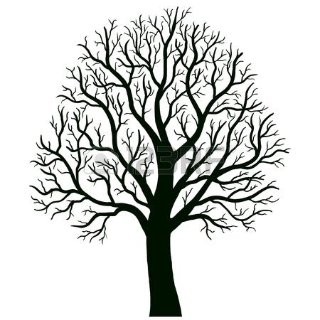 Oak Drawing
