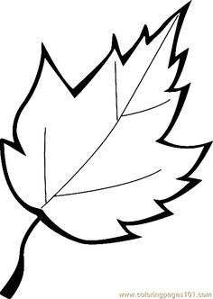 Oak Leaf Drawing Template At Getdrawings Free For Personal Use