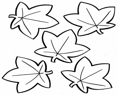 Oak Leaf Line Drawing At Getdrawings Com