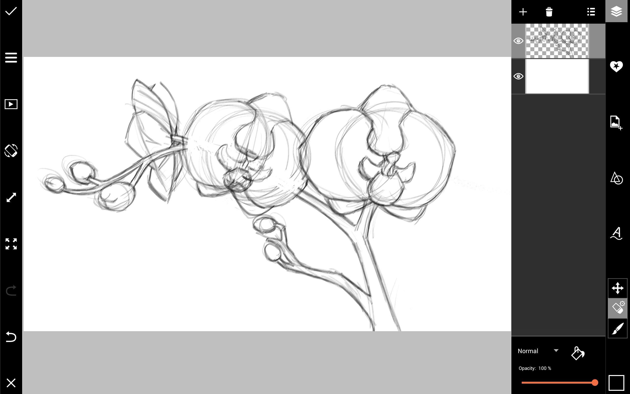 2560x1600 How To Draw Orchids With Picsart