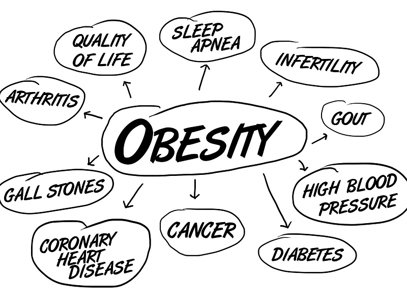 800x600 Dozens Of Societies Seek Ways To Collaborate On Obesity