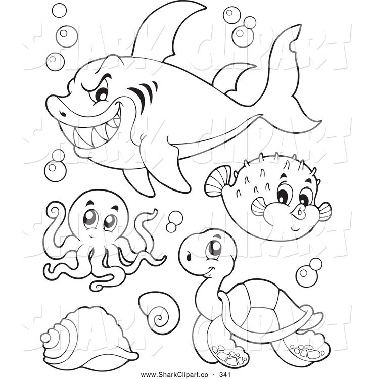 Ocean Cartoon Drawing