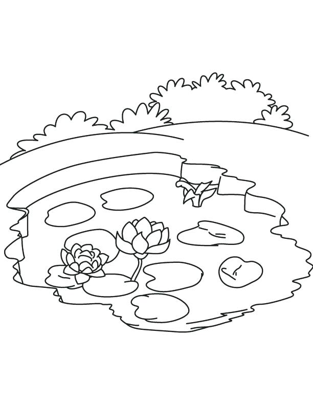 612x792 Best Of Ecosystem Coloring Pages Images Water Lily In Pond